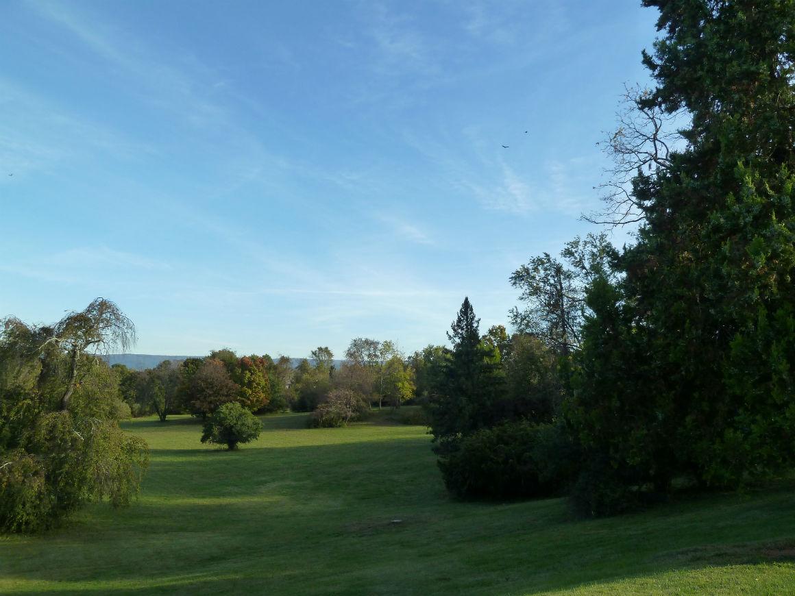 The garden of Rosemont Manor