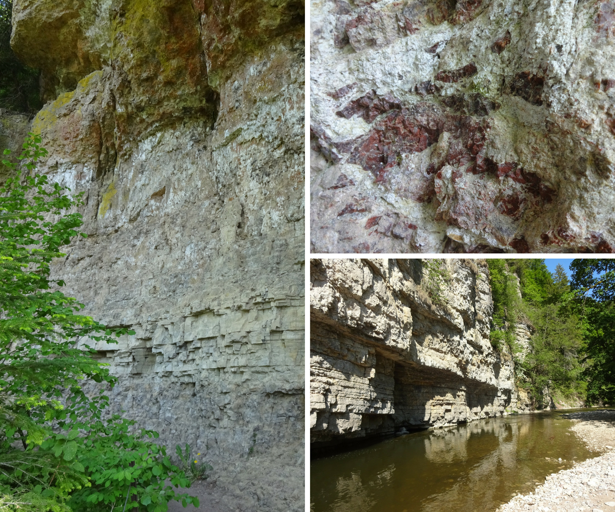 Sedimentary rock at Wutach gorge