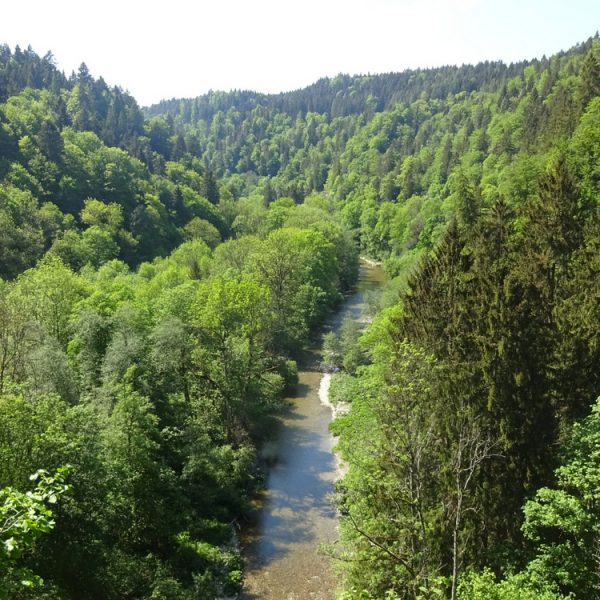 Wutach Gorge makes a beautiful destination for a weekend getaway.