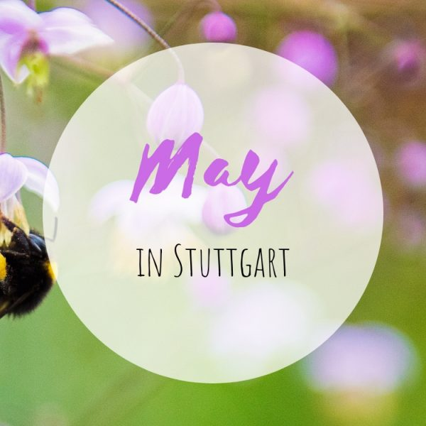 May in Stuttgart